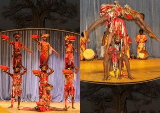 Lions of Africa II